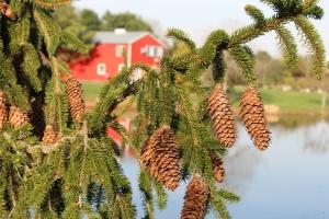 027_farm_picture